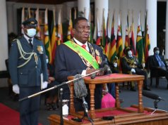 President Emmerson Mnangagwa Picture Source Online