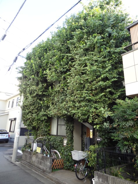 tokyo-house-2