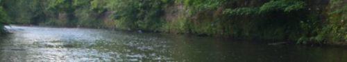 A nice ripple