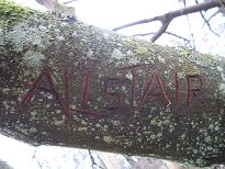 treename