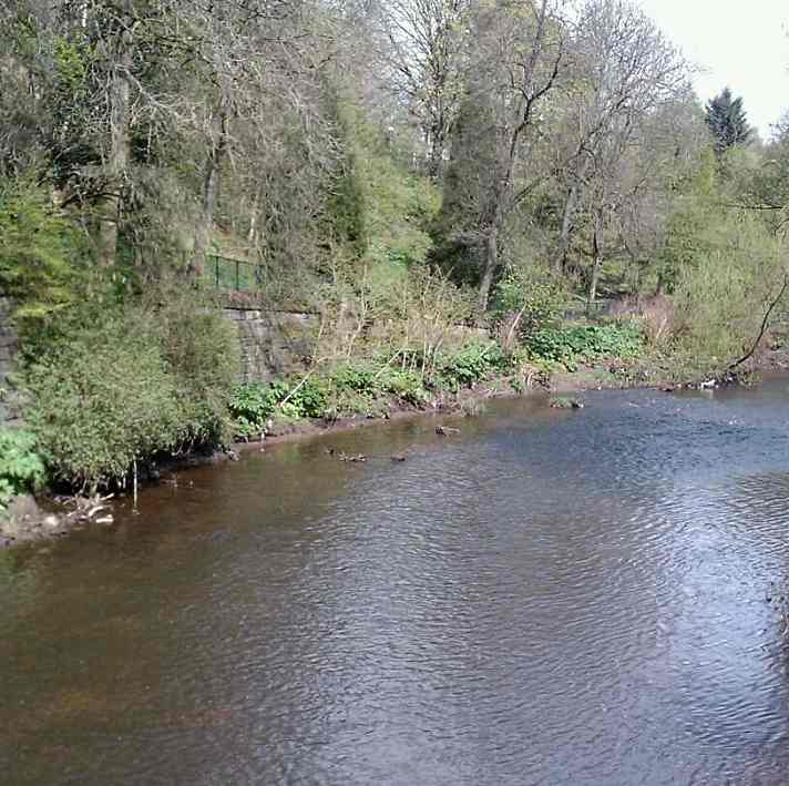 Lovely pool - perfect height - of course totally barren of anglers!