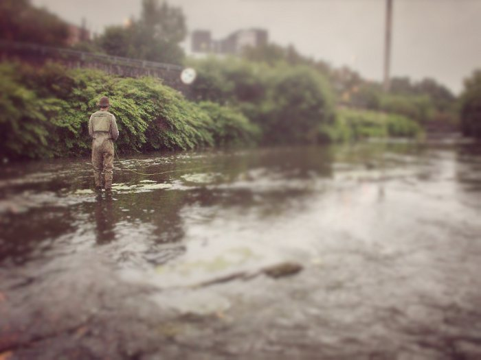 Urban fly fishing on the kelvin..
