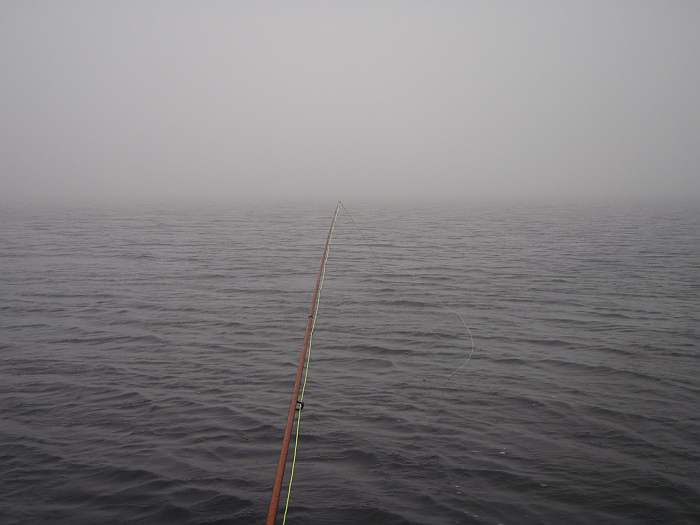 You could see a few rod lengths at one point....