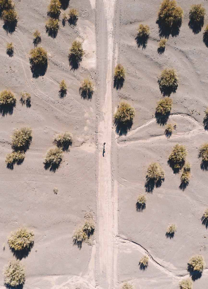 aerial view of bushes on sand field