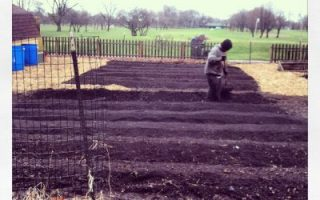 Winter Planting & Putting your Garden to Bed