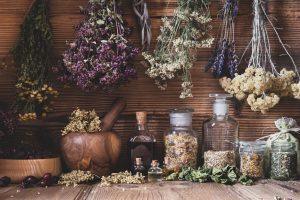 CCCC-Herbalism-Amy-Neill