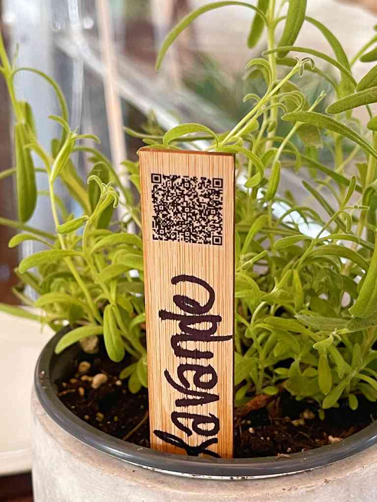Greenery with a QR code, a fun way to find the menu at Au Jardin.
