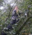 Jul N17: Kiraz up a plum tree on the marshes