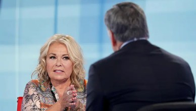 Roseanne Barr on Hannity (Credit: Fox News)