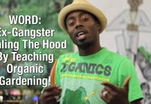 WORD: Ex-Gangster Healing The Hood By Teaching Organic Gardening!