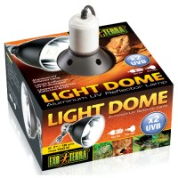 Light Dome