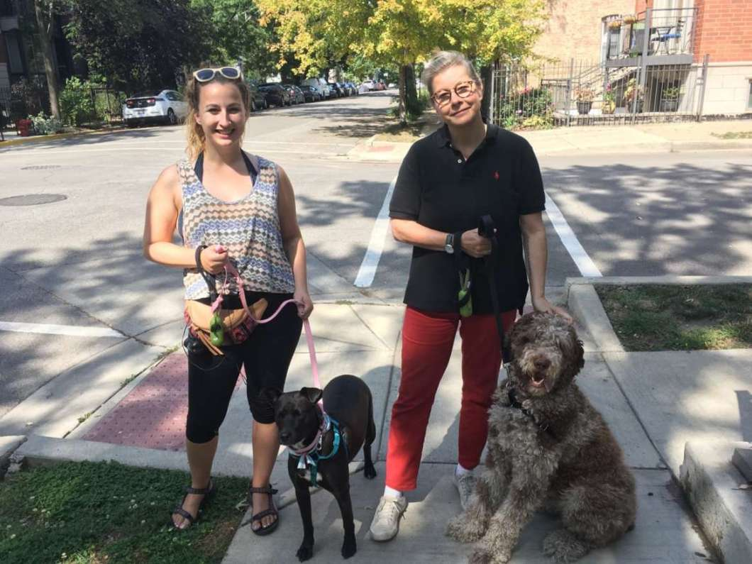 Windy City Dog Walkers