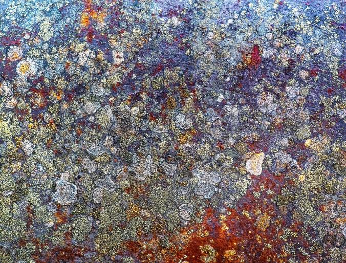 Barkerville Rust