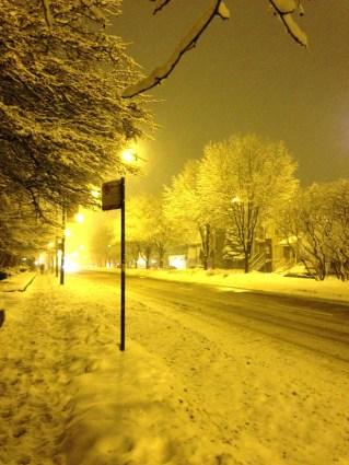 Irving Park Road Saturday night