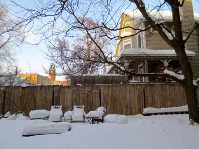 My courtyard Monday