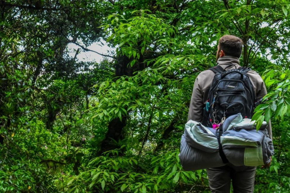 man carrying camping backpack standing in front of tree