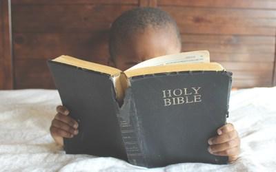 Bible Study Leader