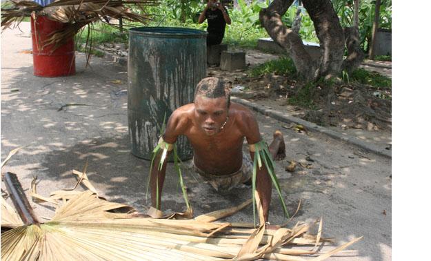 _mangrovo_92531_mangovo2