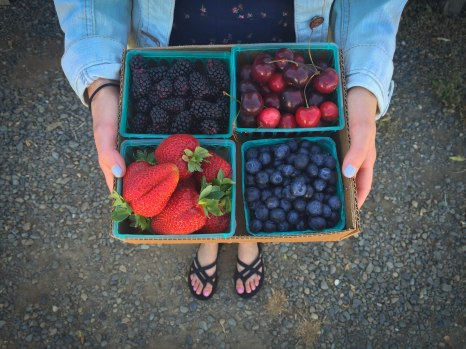 Local Fruit Stand