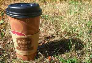 Coffee-Worms