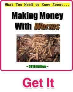 Make-Money-With-Worms-UWC
