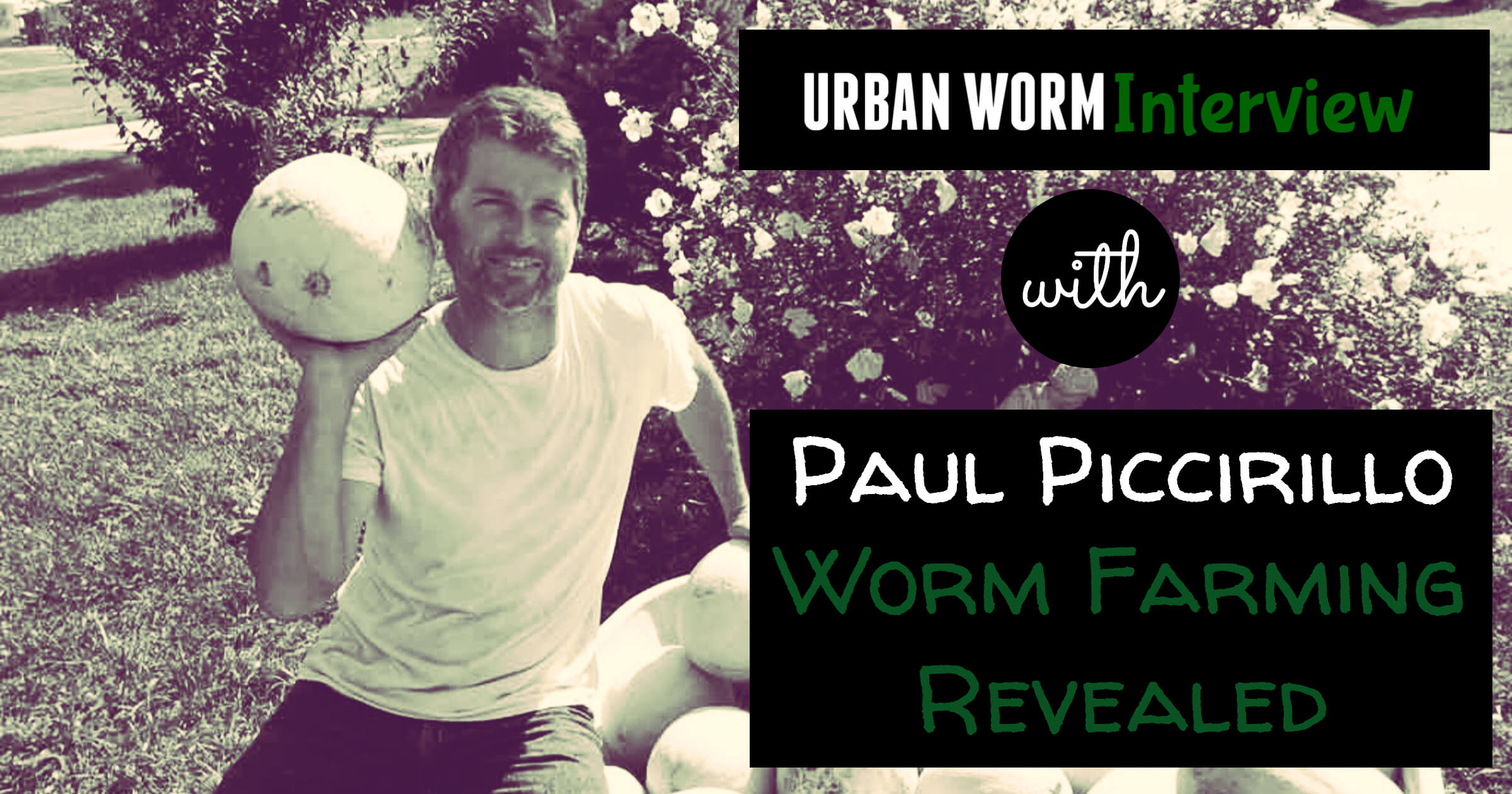 Urban Worm Interview Series: Paul Piccirillo of Worm Farming Revealed