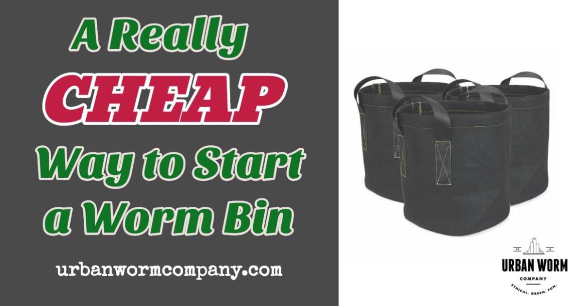 cheap-way-to-start-worm-farm