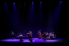 Ara Malikian Urbeat Auditorio Telmex