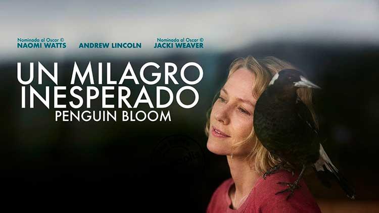 Premiere GDL Un Milagro Inesperado (Penguin Bloom)