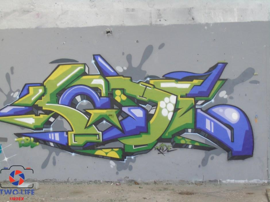 DSC04236