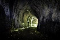 Portals6