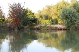 In der Kleinstadt am Rande des Donaudeltas gibt es nur vier Straßen, aber dafür Hunderte von Kanälen mit einer Gesamtlänge von vierzig Kilometern.