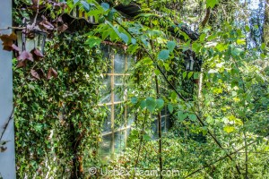 Hidden Villa 11