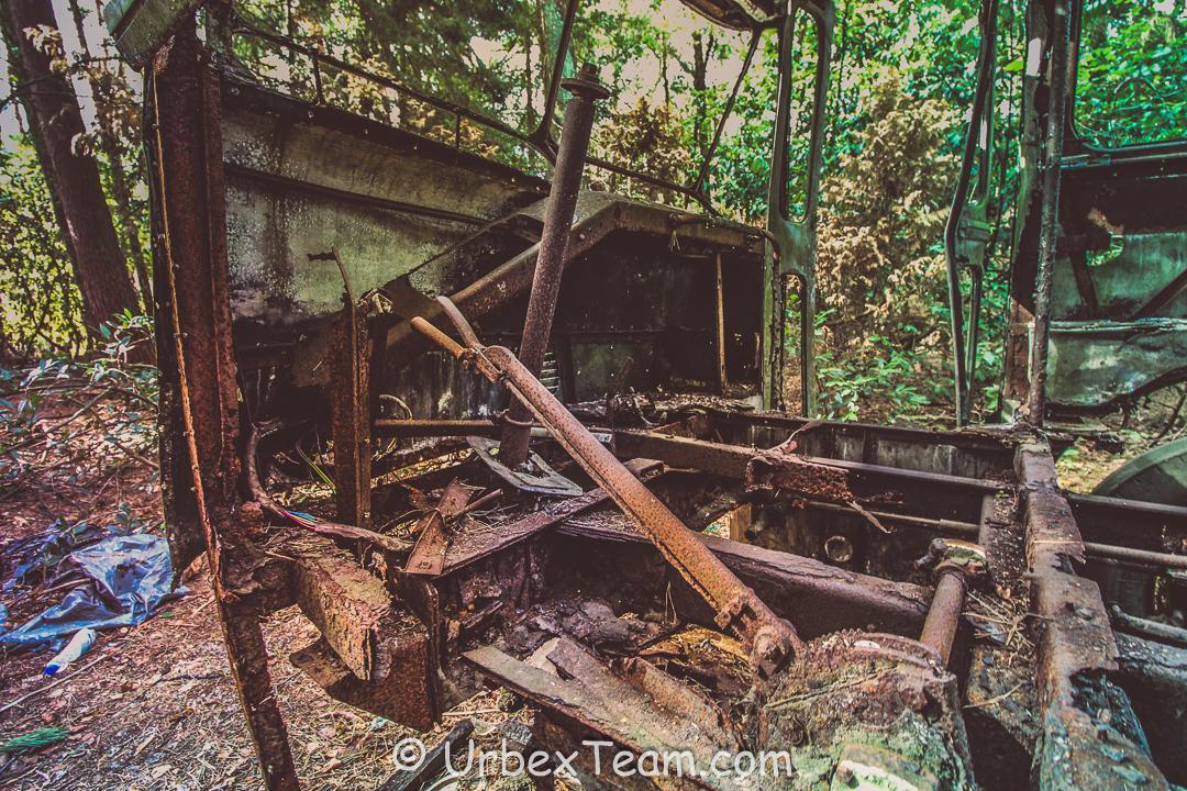 Jungle Bus 6