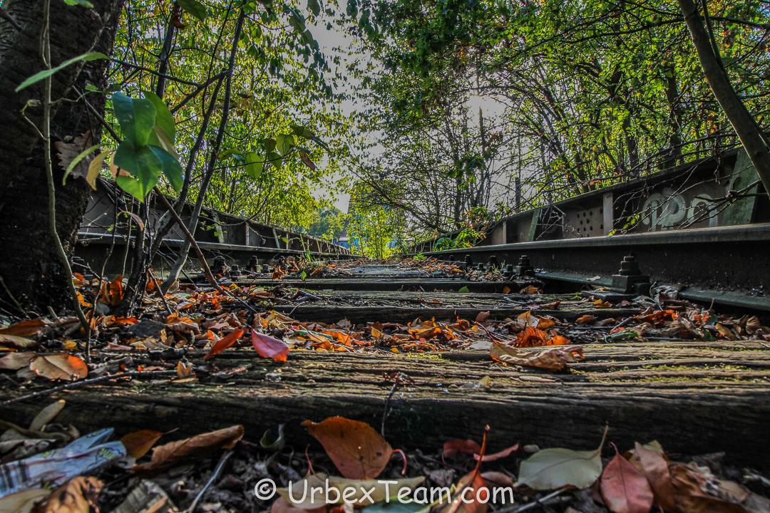 Old Train Bridge 6