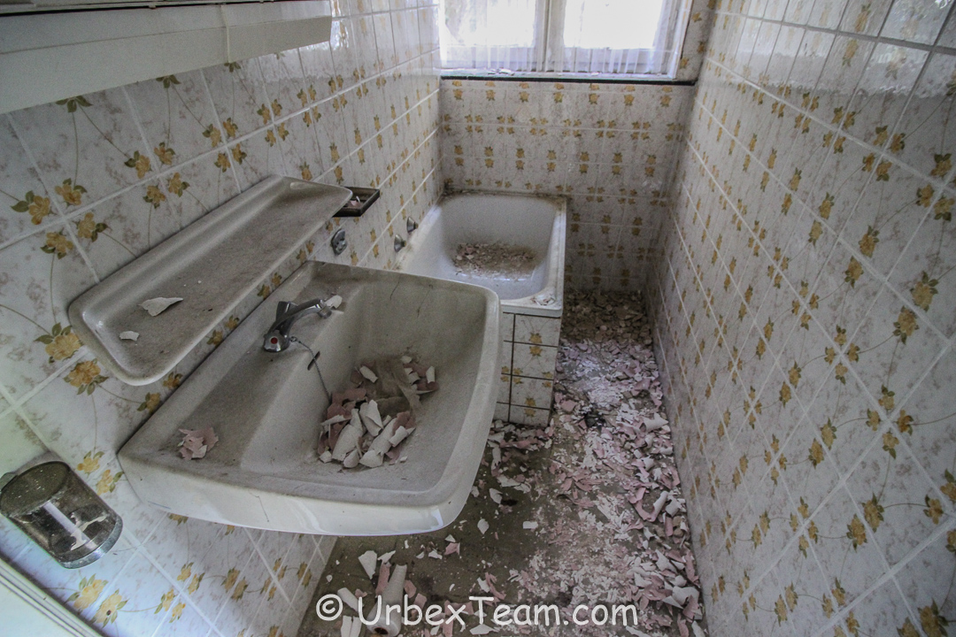 Mold House 7