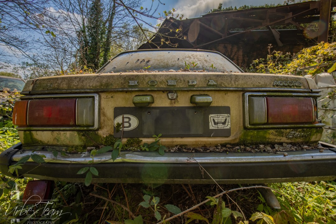 Ureel Cars 3