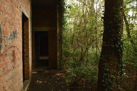 spookhotel-swamphotel-027