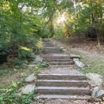 Savin Hill Park