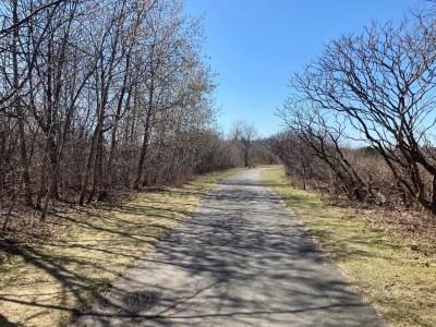 Belle Isle Marsh Reservation in East Boston gravel paths