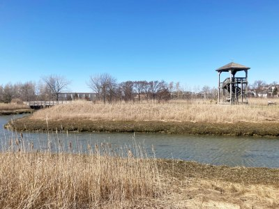 Belle Isle Marsh Reservation in East Boston observation tower