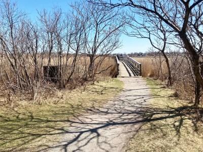 Belle Isle Marsh Reservation in East Boston bridge