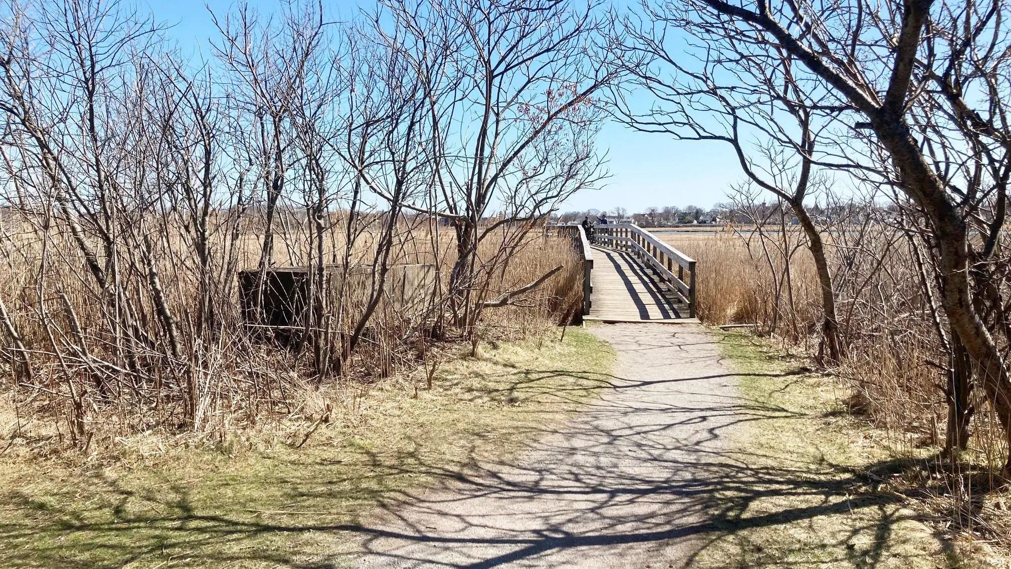 belle isle marsh east boston