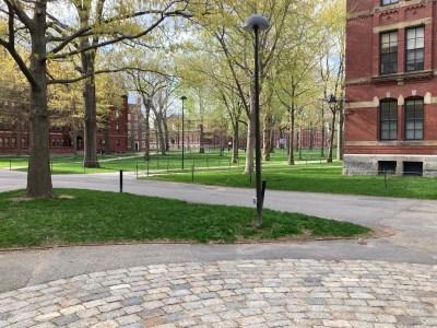Harvard Yard, Harvard University in Cambridge, MA