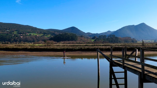stand up paddle urdaibai