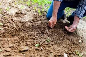 Право селян на землю