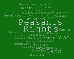 """International conference """"Towards the United Nations Declaration on the rights of peasants and other people working in rural areas"""""""