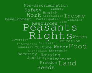 """Запрошення на міжнародну конференцію """"На шляху до декларації ООН про права селян та інших людей, які працюють у сільській місцевості"""""""