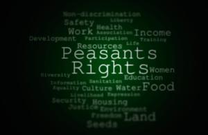 Підтримка проекту Декларації ООН про права селян
