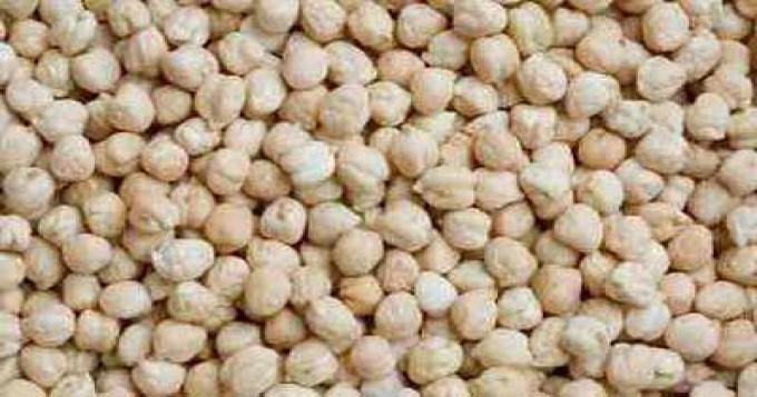 پنجاب میں چنے کی کاشت کارقبہ 21لاکھ 90ہزار ایکڑ اور پیداوار 4لاکھ 9ہزار ٹن سے تجاوز کرگئی، ترجمان محکمہ زراعت   PA
